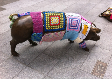 Adelaide pigs yarn bombed