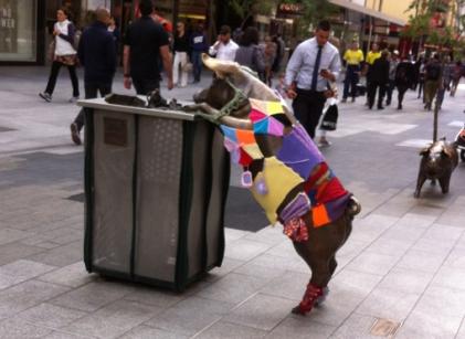 Adelaide pigs yarn bombed