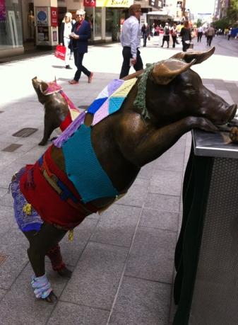 Adelaide pigs yarnbomed