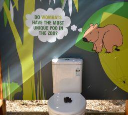 #wombat