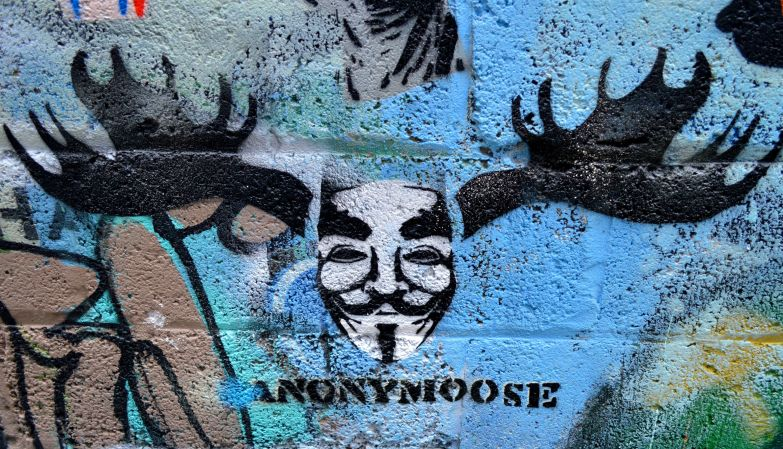 #anonymoose