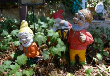 #gnomes #fairyland