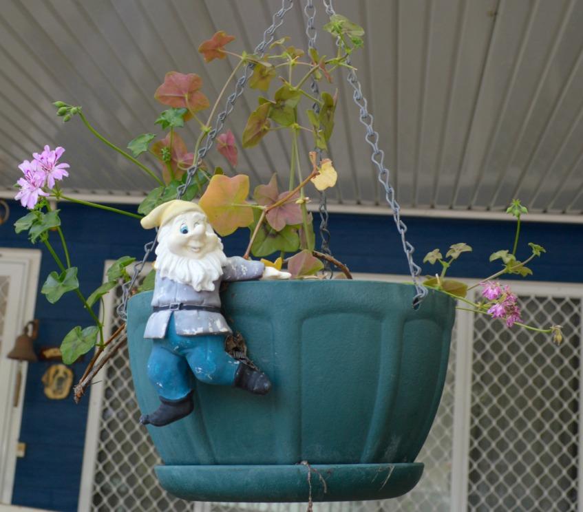 #Gartenzwerg #gnome