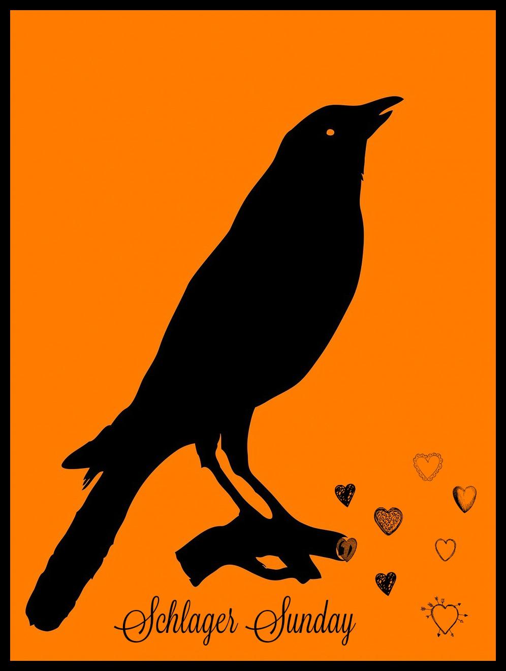 #kitsch #bird