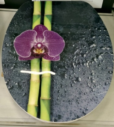 #orchid #toilet