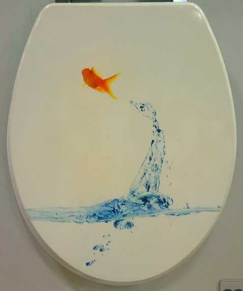 #fresh #fish