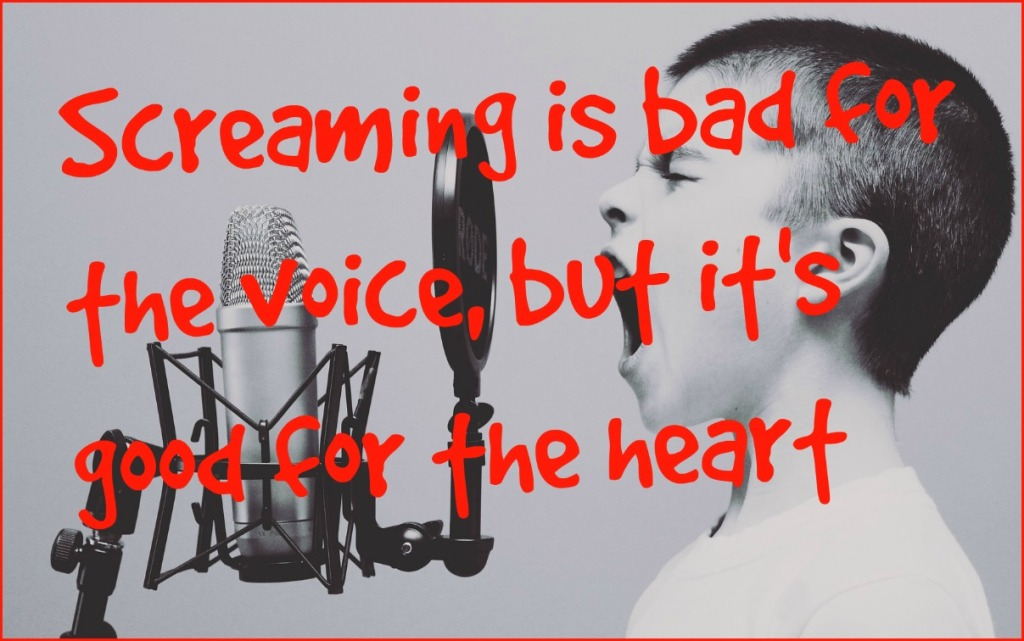 #Conor Oberst #quote #scream