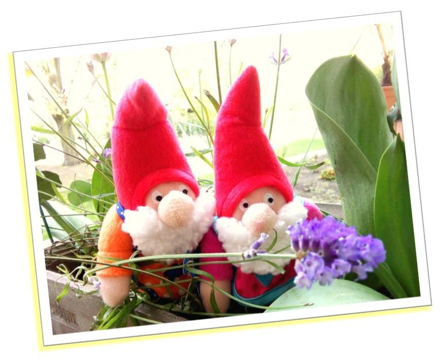 garden gnome urban gardening
