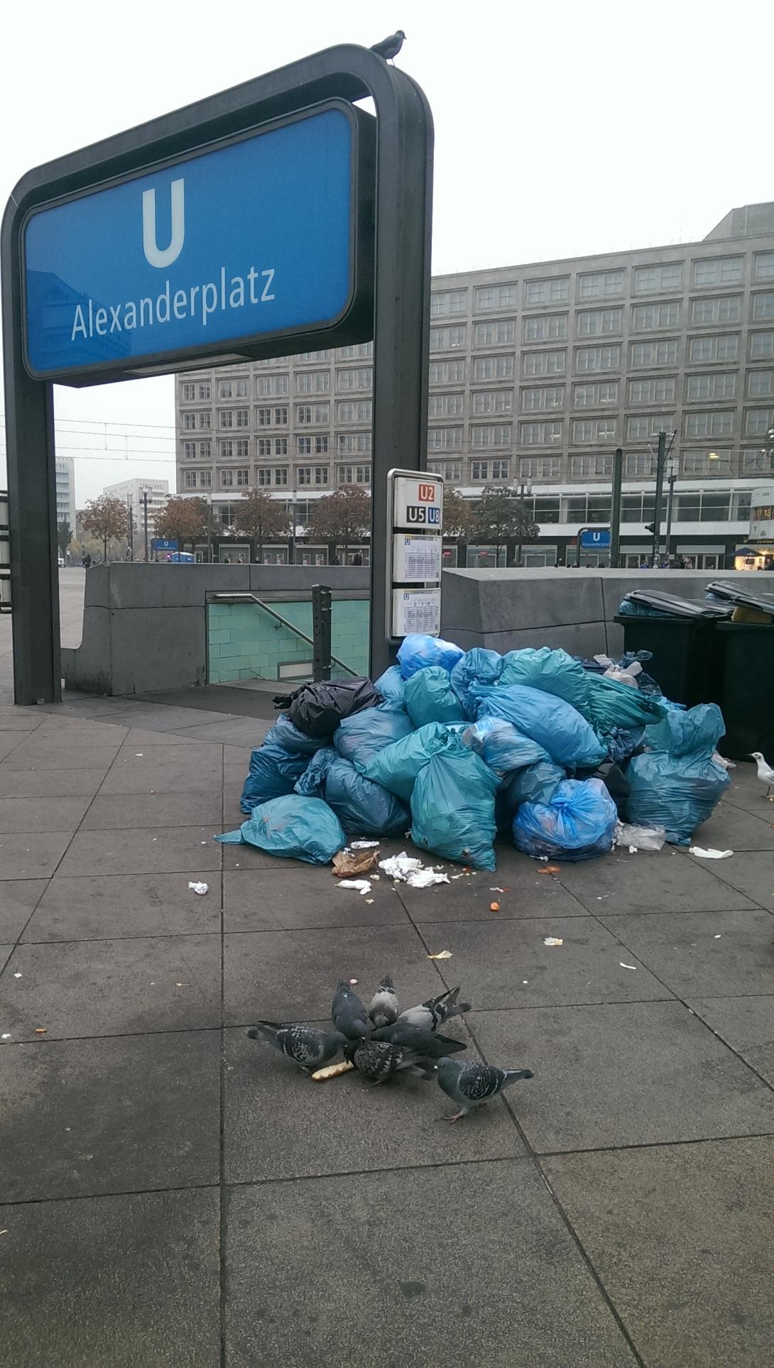 Tauben auf dem Alexanderplatz