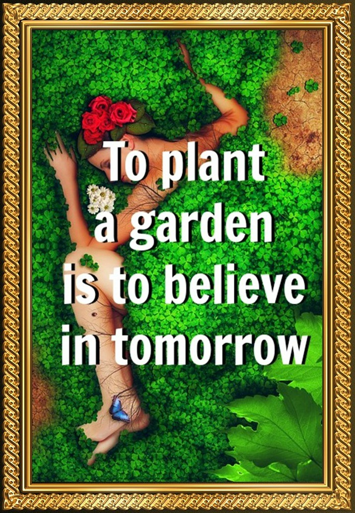 To plant a garden is to believe in tomorrow be kitschig quote