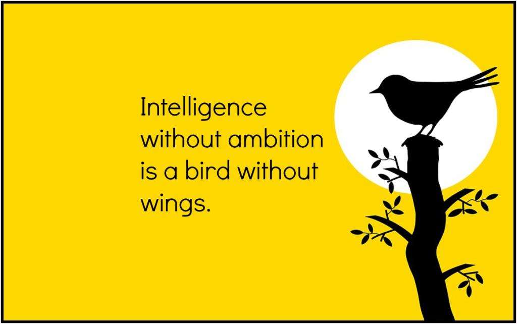 Dali quote ambition goals kitsch