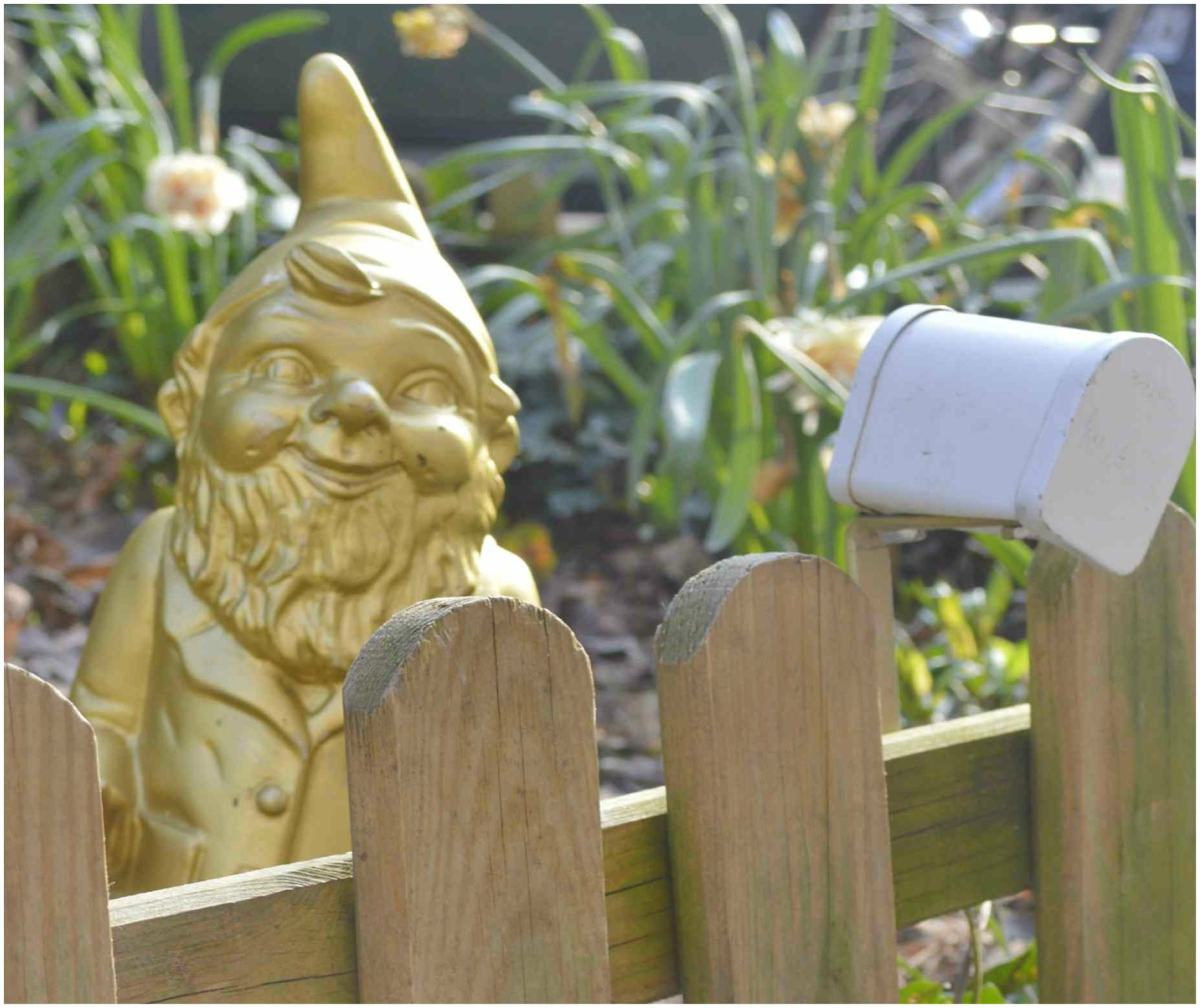 Meet Heinrich the Garden Gnome