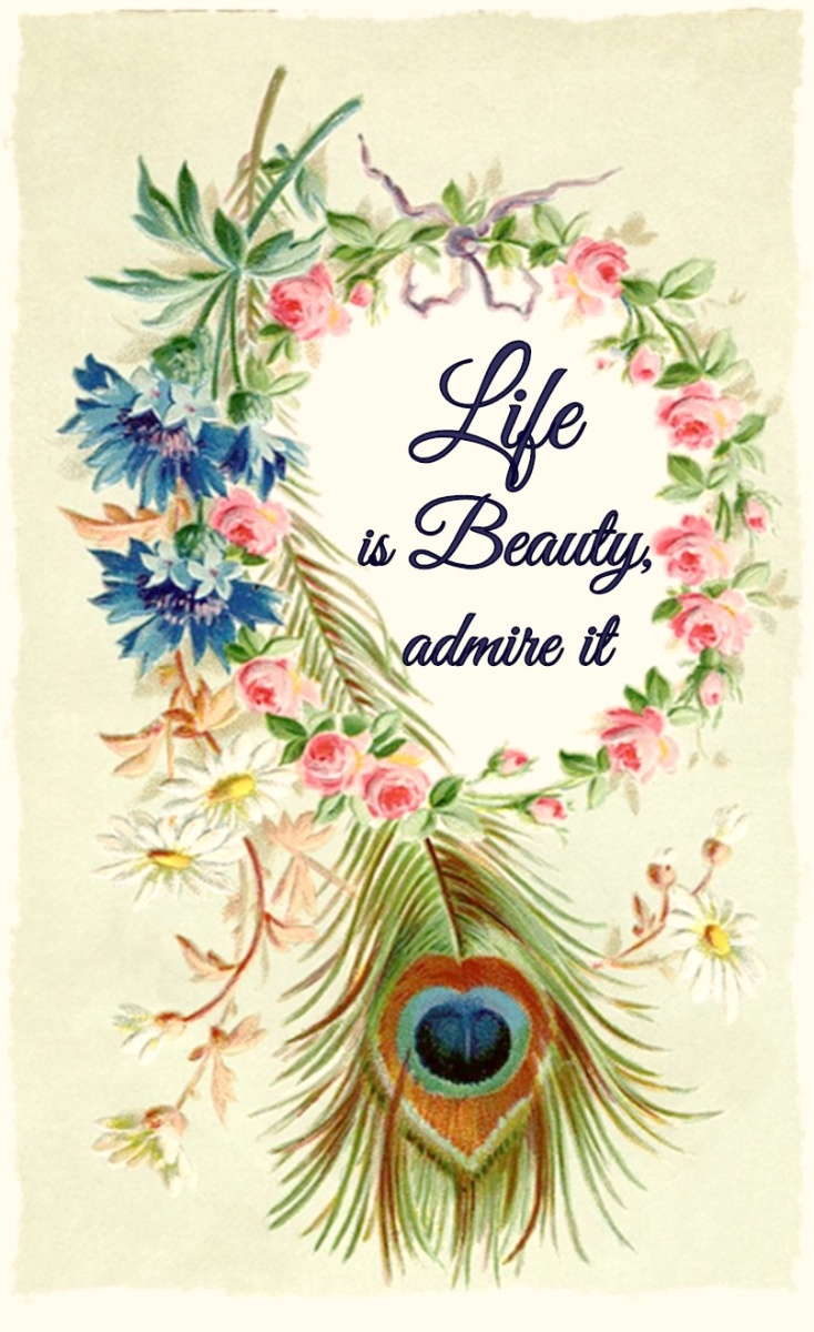 Life is Beauty
