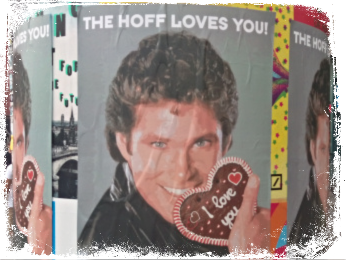 David Hasselhoff Berlin The Hoff Loves You Circus Hostel